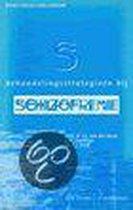 Behandelingsstrategieen bij schizofrenie