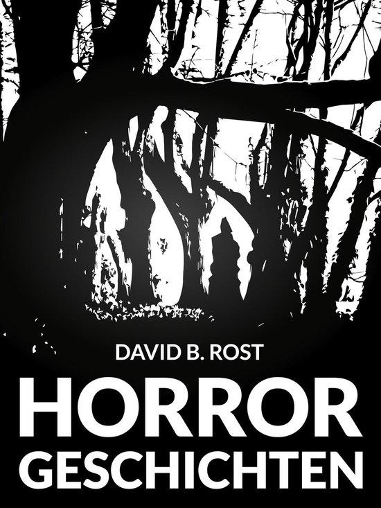 Boek cover Horrorgeschichten van David B. Rost (Onbekend)