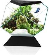 Ciano Aquarium Nexus Betta 5C - 27x31x26 cm - Zwart