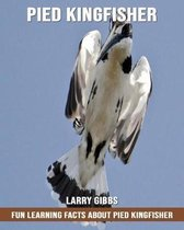 Fun Learning Facts about Pied Kingfisher
