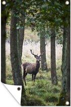 Hert tussen de bomen Tuinposter 60x90 cm - Tuindoek / Buitencanvas / Schilderijen voor buiten (tuin decoratie)