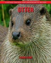 Otter: Lustige Fakten und sagenhafte Bilder