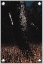 Tuinposter –Olifantenslurf– 30x40  Foto op Tuinposter (wanddecoratie voor buiten en binnen)