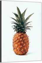 Dibond –Ananas– 60x90cm Foto op Aluminium (Met Ophangsysteem)
