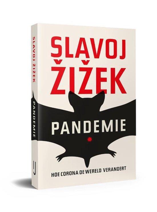Afbeelding van Pandemie