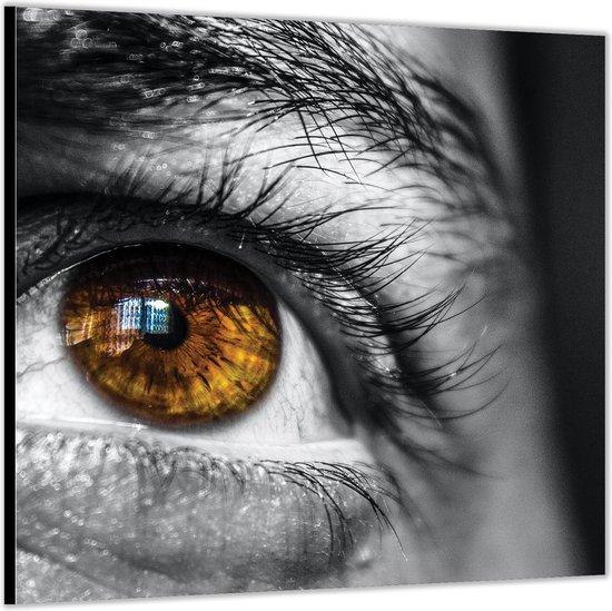 Dibond –Bruin / Groen Oog Close Up -80x80 Foto op Aluminium (Met ophang