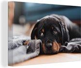 Schattige Rottweiler pup ligt op de vloer Canvas 140x90 cm - Foto print op Canvas schilderij (Wanddecoratie woonkamer / slaapkamer) / Huisdieren Canvas Schilderijen