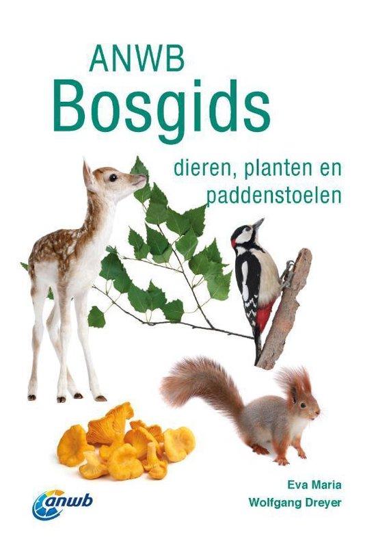 Boek cover ANWB natuurgidsen  -   ANWB Bosgids van Eva-Maria Dreyer (Paperback)