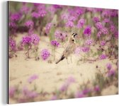 Leeuwerik omringt door de knalroze bloesems Aluminium 30x20 cm - klein - Foto print op Aluminium (metaal wanddecoratie)