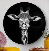 HIP ORGNL Giraf Round   giraffe wanddecoratie   rond schilderij   wandcirkel   muurcirkel   ⌀  100 cm   dier / zwart / wit /   kunstwerken   dibond   aluminium   dieren
