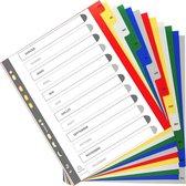 20x Tabbladen met bedrukte tabs in gekleurde PP - 12 tabs - januari/december - A4 maxi, Geassorteerde felle kleuren