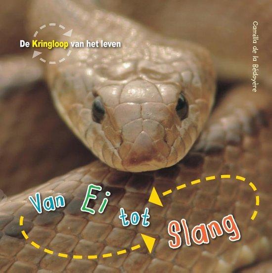 De Kringloop van het Leven - Van ei tot slang - Camilla de La Bedoyère | Readingchampions.org.uk