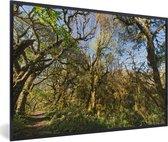 Poster met lijst Nationaal park Calilegua - De jungle in het nationaal park Calilegua met helderblauwe lucht in Argentinië - fotolijst zwart - 30x20 cm - Poster met lijst