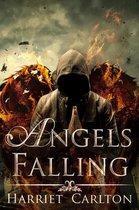 Omslag Angels Falling