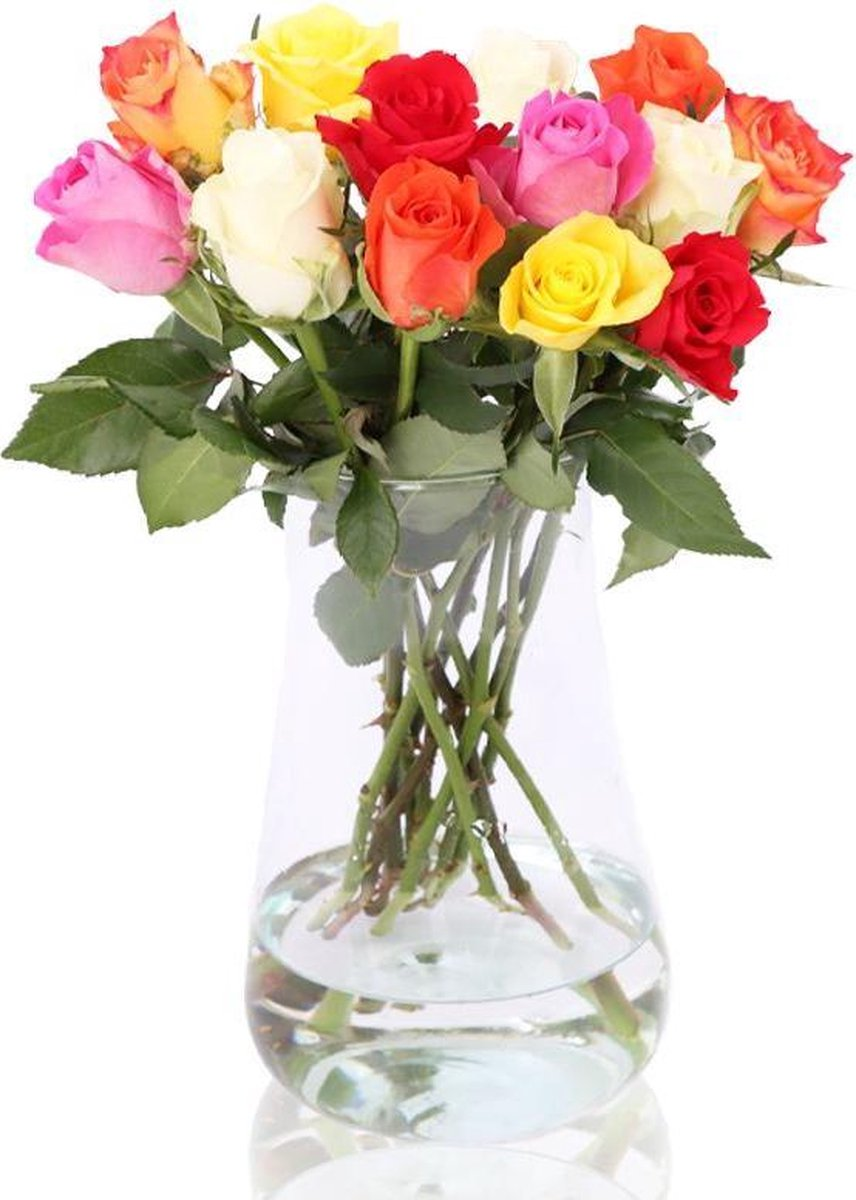 e-bloom Brievenbus Rozen Bonte Mix