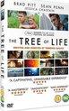 Tree Of Life (Import)
