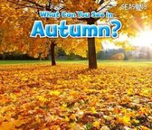 What Can You See In Autumn?