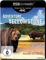 Adventure Yellowstone (Ultra HD Blu-ray)