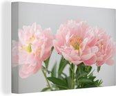 Boeket van roze pioenrozen Canvas 180x120 cm - Foto print op Canvas schilderij (Wanddecoratie woonkamer / slaapkamer) / Bloemen Canvas Schilderijen XXL / Groot formaat!