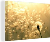 Paardenbloemen 140x90 cm - Foto print op Canvas schilderij (Wanddecoratie woonkamer / slaapkamer)