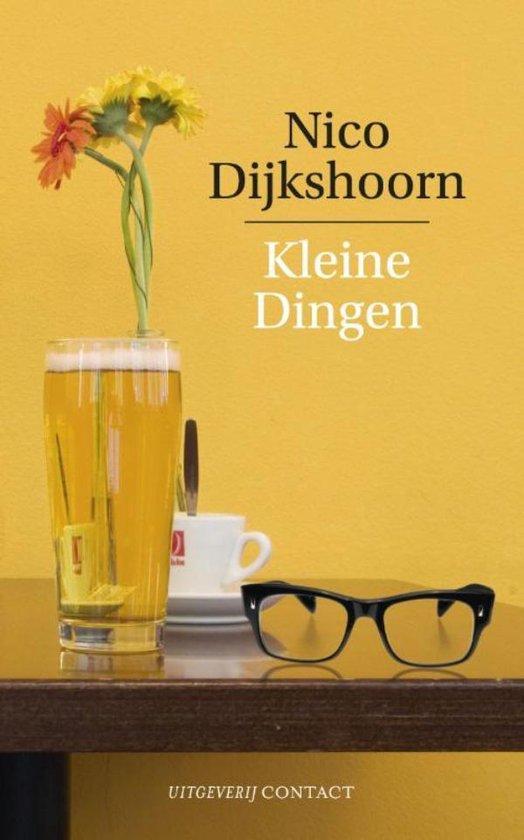 Kleine dingen - Nico Dijkshoorn pdf epub
