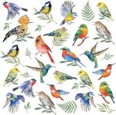 20x Vogels / dieren thema servetten 33 x 33 cm - Papieren servetten 3-laags