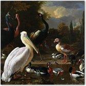 Pelikaan en ander gevogelte - d' Hondecoeter - Vogels - Schilderij op Canvas