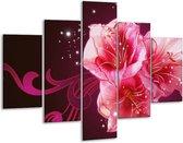 Glasschilderij Lelie   Roze, Paars, Zwart   100x70cm 5Luik   Foto print op Glas    F005770