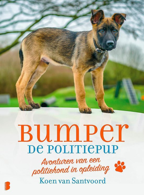 Bumper de politiepup - Koen van Santvoord |