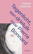 Omslag -   Tegenlicht, een triptiek naar Pierre Bonnard