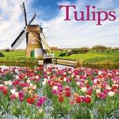 Tulips Kalender 2021