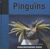 Verbazingwekkende dieren  -   Pinguins