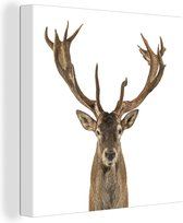 Close-up van een edelhert Canvas 40x30 cm - klein - Foto print op Canvas schilderij (Wanddecoratie woonkamer / slaapkamer) / Wilde dieren Canvas Schilderijen