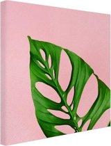 Botanische Wanddecoratie Van Canvas Kopen Kijk Snel Bol Com
