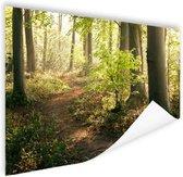 Pad in het bos  Poster 120x80 cm - Foto print op Poster (wanddecoratie woonkamer / slaapkamer)