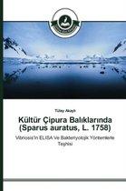 Kultur Cipura Balıklarında (Sparus auratus, L. 1758)