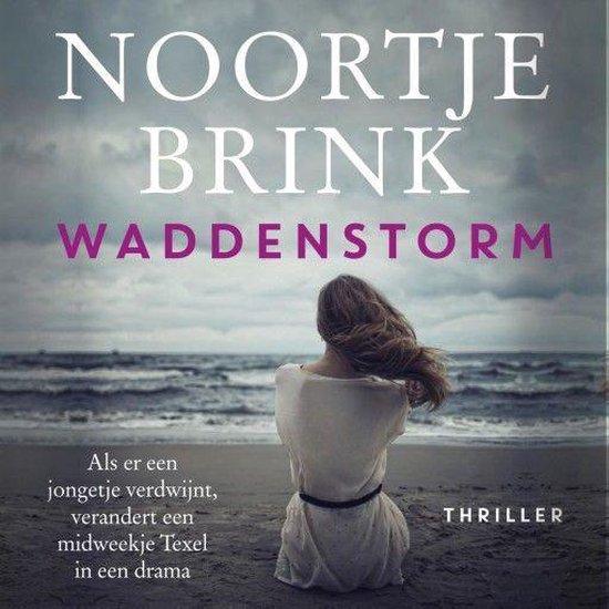 Boek cover Waddenstorm van Noortje Brink (Onbekend)