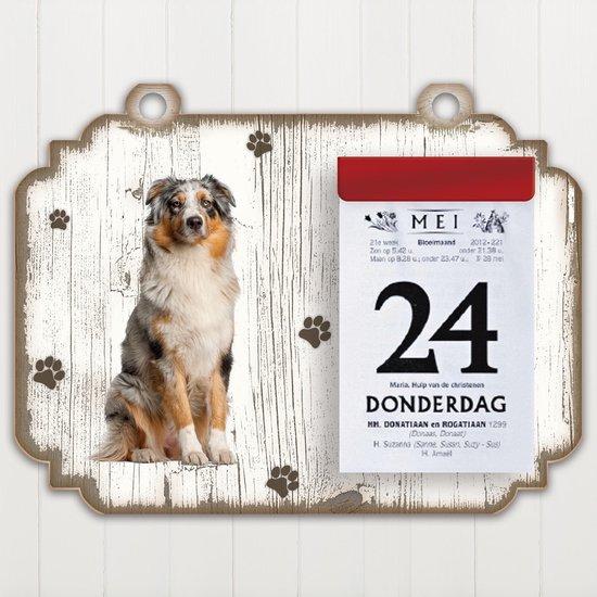 Scheurkalender 2021 Hond: Australian Shepherd Dog