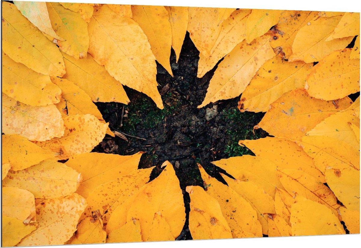 Dibond - Bladvorm van Gele Bladeren - 150x100cm Foto op Aluminium (Wanddecoratie van metaal)