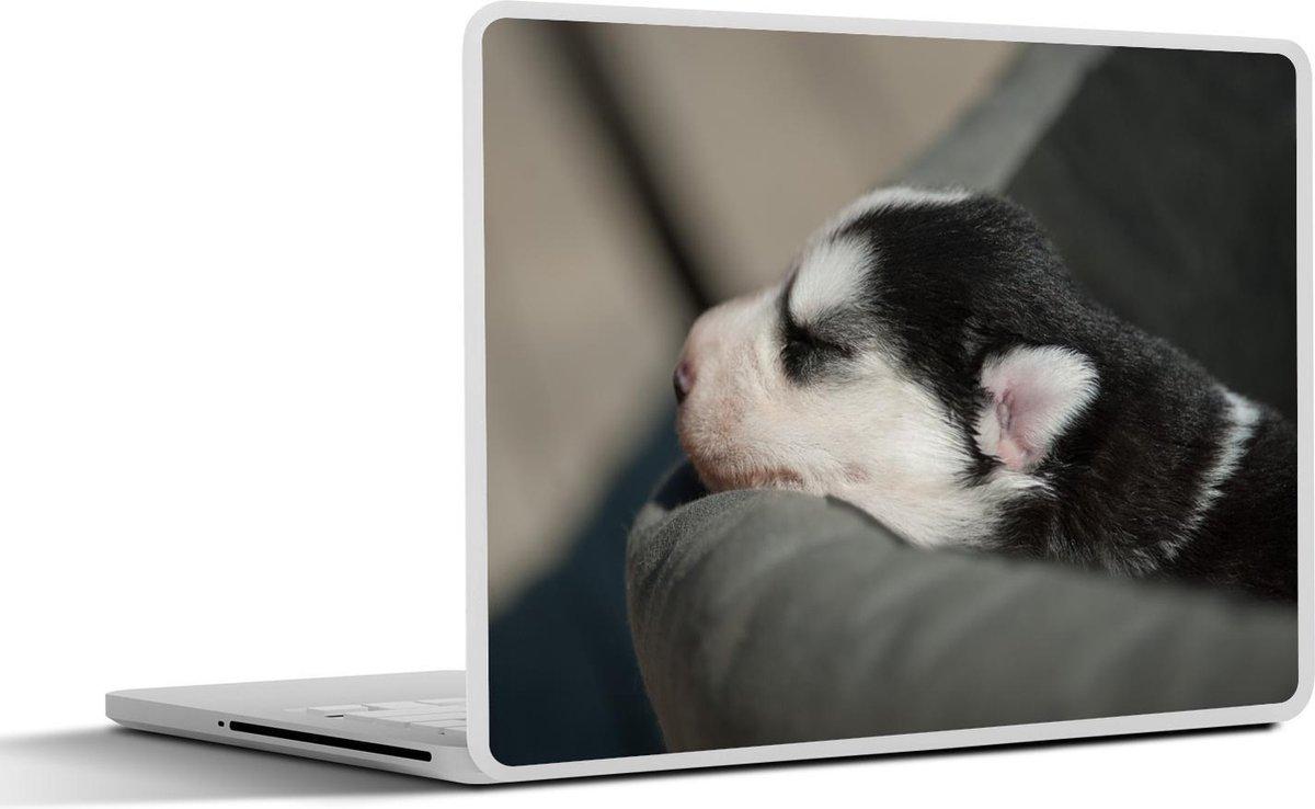 Laptop sticker - 10.1 inch - Slapende hond op de bank