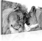 Schilderij - Leeuwen liefde in zwart wit