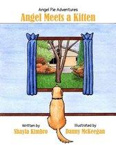 Angel Meets a Kitten