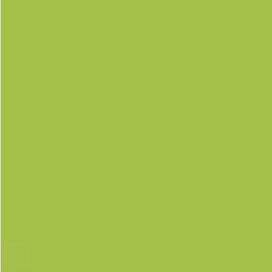 Gekleurd Papier A4 120gr FP Helgroen 250vel