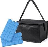 Kleine mini koeltas zwart voor 6 blikjes inclusief 2 koelelementen - Compacte koelboxen/koeltassen en elementen