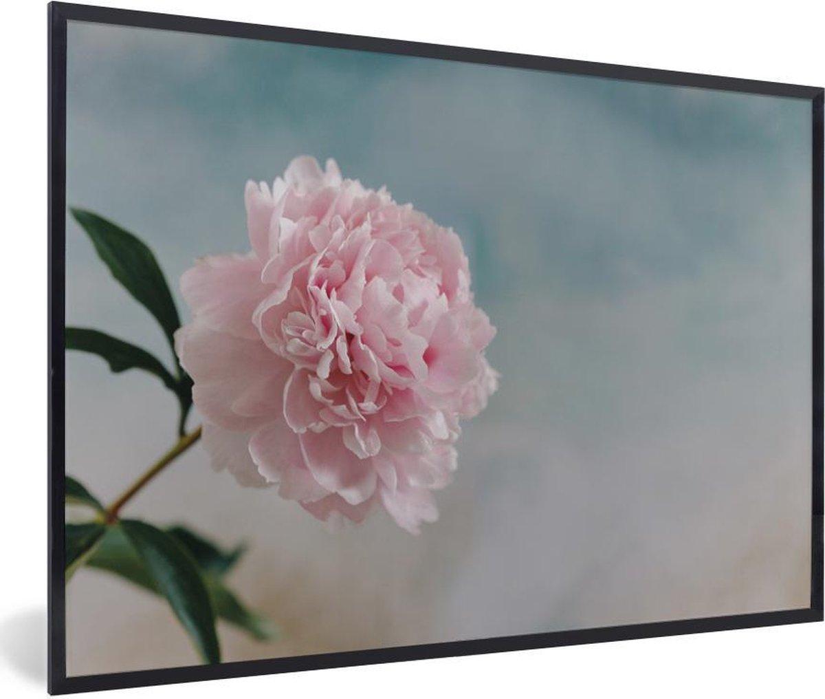 Poster met lijst Pioenroos roze - Een roze en botanische bloem met een kleurrijke hemel fotolijst zwart - fotolijst zwart - 30x20 cm - Poster met lijst