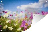 Tuinposter - Muurdecoratie - Bloemen - Wei - Paars - 180x120 cm