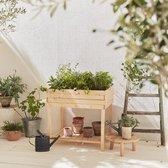 Vierkante moestuin op poten 80 x 60 cm, Anemone - Houten moestuin