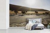 Fotobehang vinyl - Acacia bomen in de Afrikaanse Dodenvlei in Namibië breedte 390 cm x hoogte 260 cm - Foto print op behang (in 7 formaten beschikbaar)