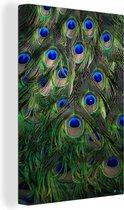 Fascinerende verenvacht van een groene pauw Canvas 20x30 cm - klein - Foto print op Canvas schilderij (Wanddecoratie woonkamer / slaapkamer)