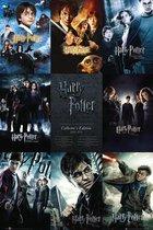 Harry Potter Poster 61x91,5cm